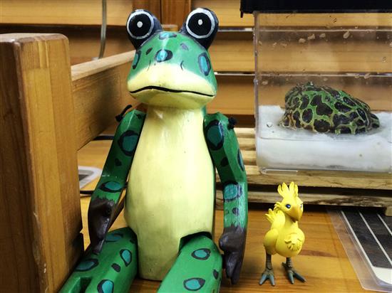 Frog_035a.jpg