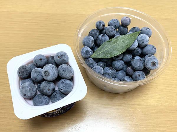 blueberry_9159a.jpg