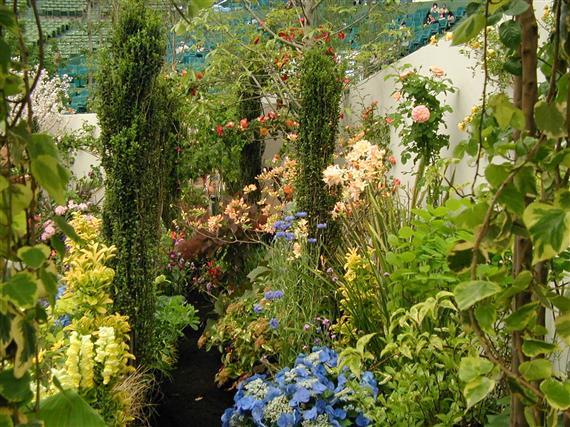 flower_P1010030a.jpg