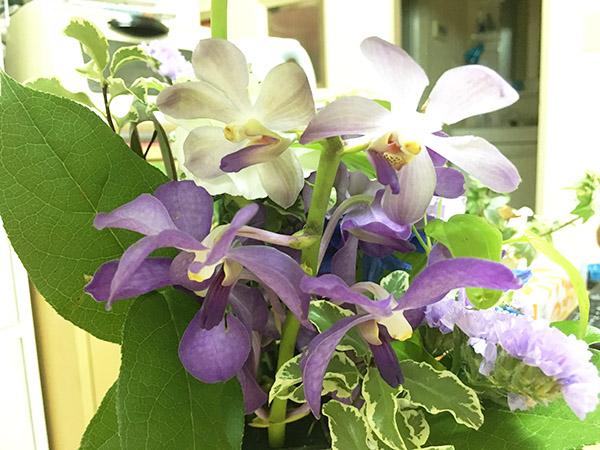 flowers_3320c.jpg