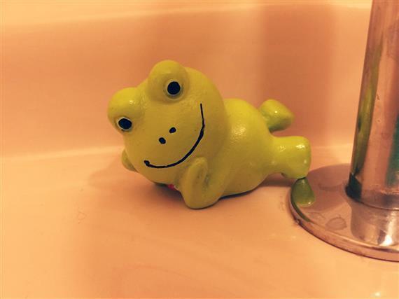 frog_0222a.jpg