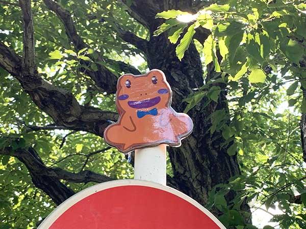 frog_0273a.jpg
