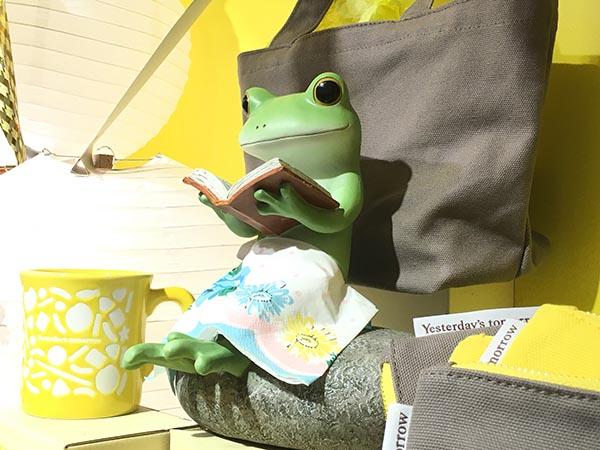frog_8918a.jpg