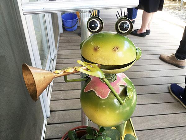 frog_9826a.jpg