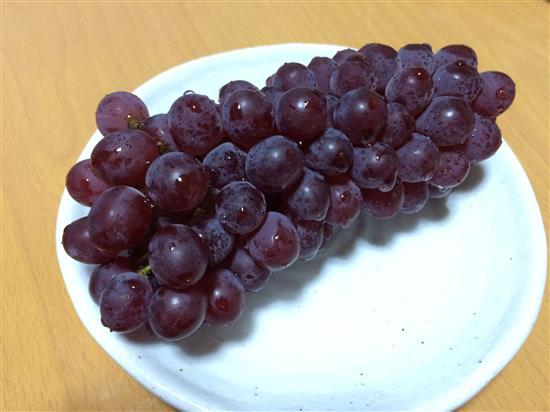 grape_032a.jpg