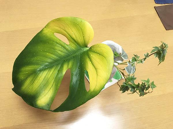 leaf_7878a.jpg