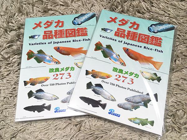 medaka-book_9656b.jpg