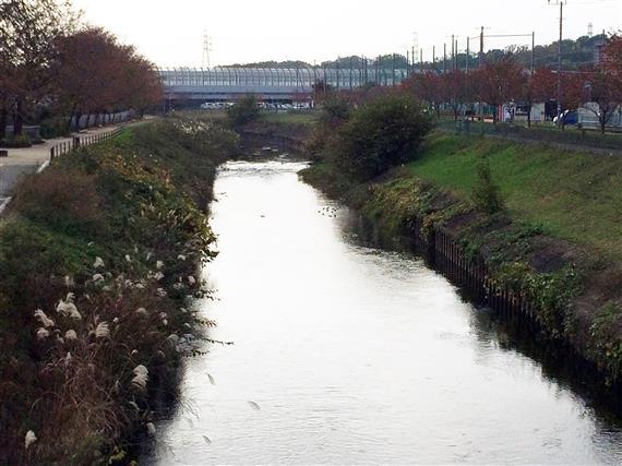 river_101a.jpg