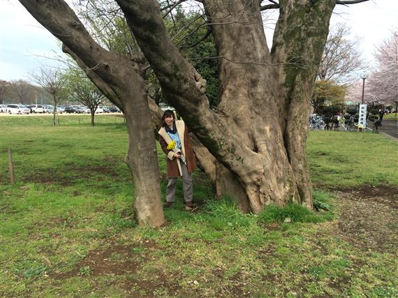 tree-yuppie_IMG_6679a.jpg