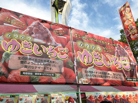 yoyogi_8054a.jpg